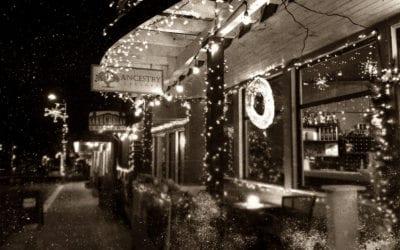 Village of Lights History
