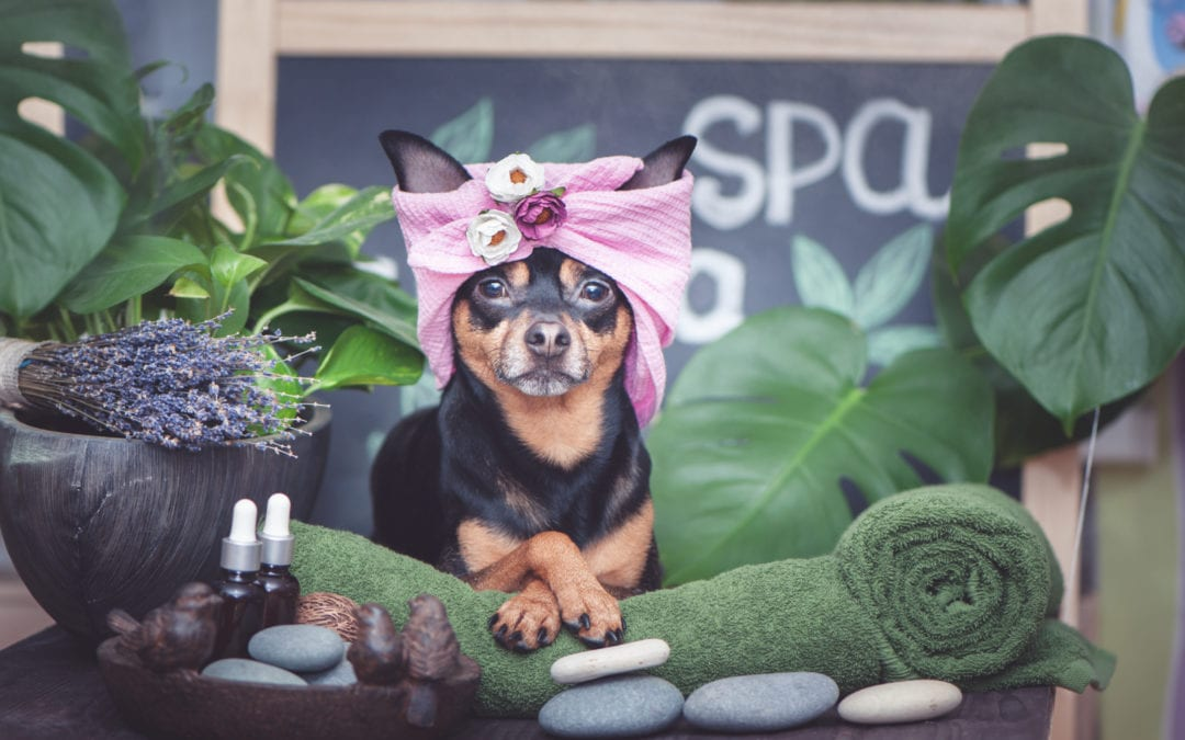 A place to relax; a time to heal – Spa time at Lake Chelan